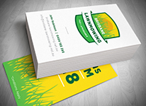 Logo Design Gold Coast Business Cards Design Printing